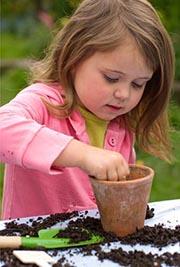 Выращиваем кактус в детской комнате