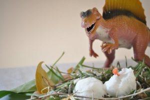 Яйца динозавра